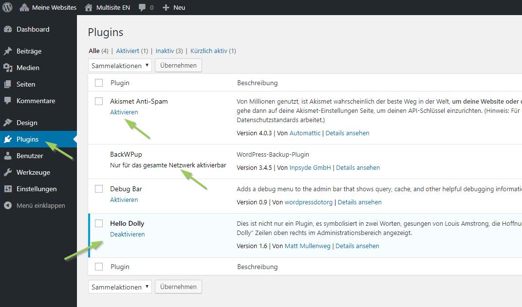 Die Plugins-Verwaltung aus Sicht eines Seiten-Admins in einer WP Multisite