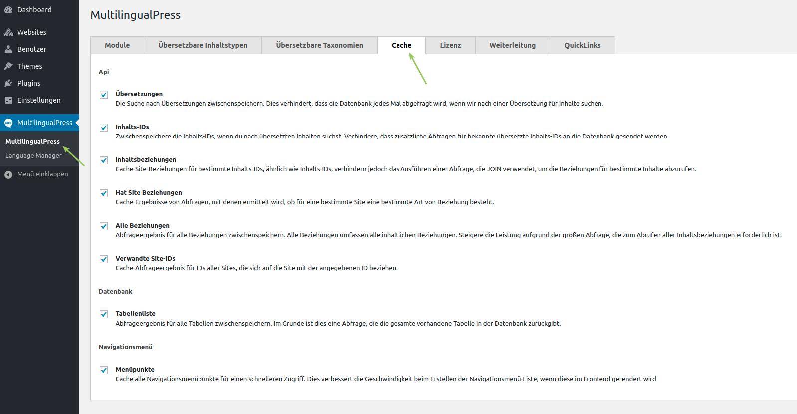 Einstellung der Cache-Optionen mit MultilingualPress